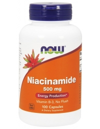 Now Foods Niacinamide 500mg 100Caps