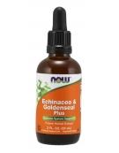Now Foods Echinacea & Goldenseal Plus 59ml