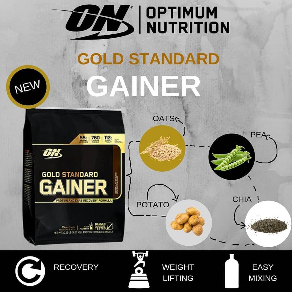Optimum Nutrition Gold Standard Gainer 7,16lbs
